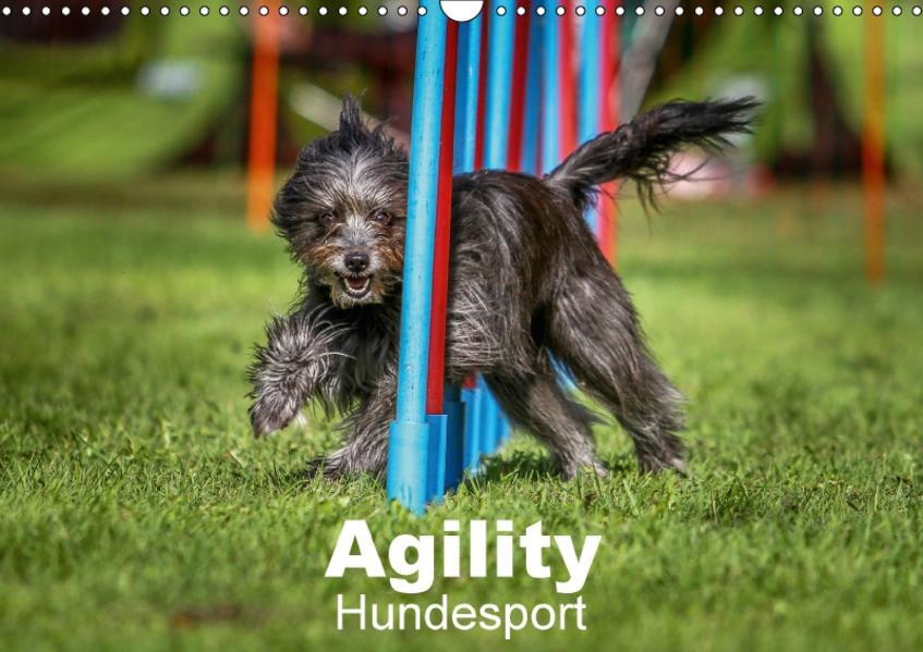Agility Hundesport (Wandkalender 2017 DIN A3 quer) - Coverbild