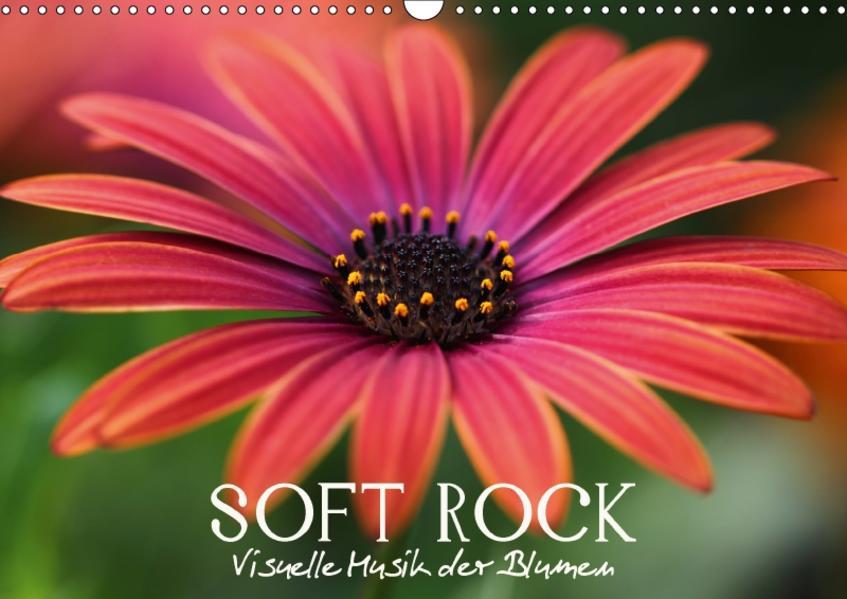 Soft Rock - Visuelle Musik der Blumen (Wandkalender 2017 DIN A3 quer) - Coverbild