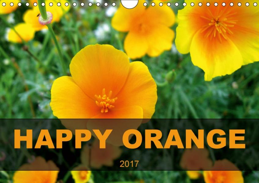 HAPPY ORANGECH-Version  (Wandkalender 2017 DIN A4 quer) - Coverbild