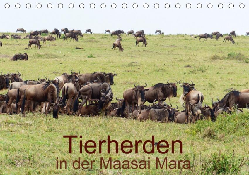 Tierherden in der Maasai Mara (Tischkalender 2017 DIN A5 quer) - Coverbild