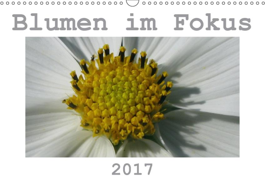 Blumen im Fokus (Wandkalender 2017 DIN A3 quer) - Coverbild