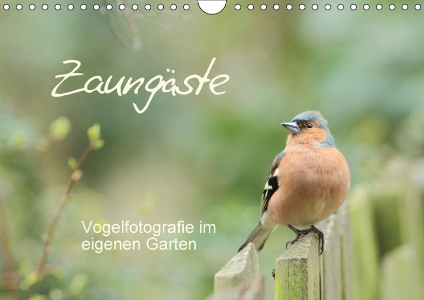 Zaungäste (Wandkalender 2017 DIN A4 quer) - Coverbild