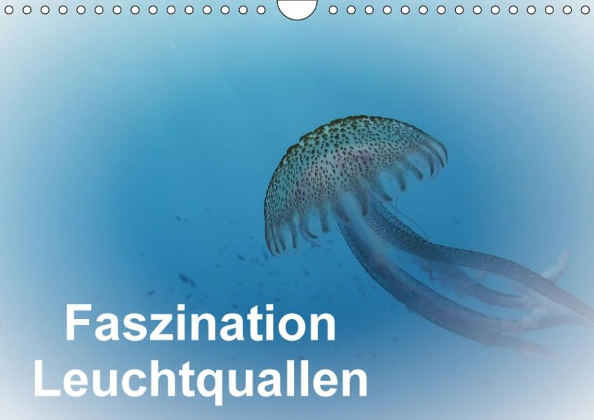 Faszination Leuchtquallen (Wandkalender 2017 DIN A4 quer) - Coverbild