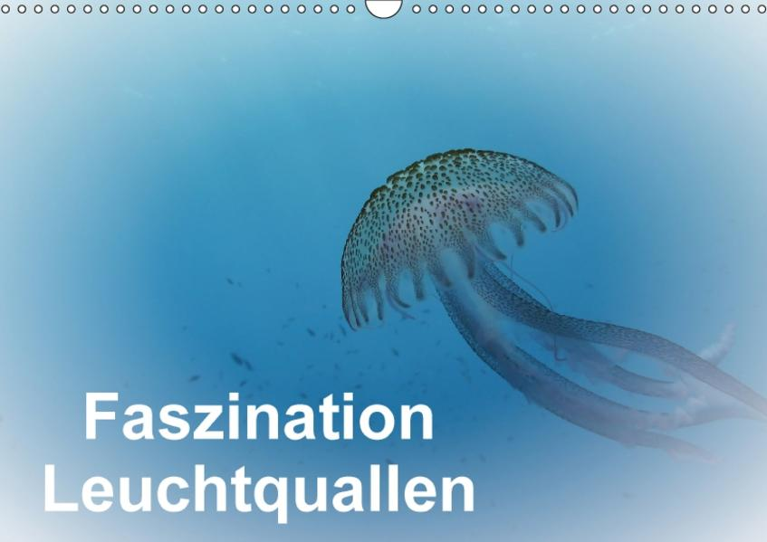 Faszination Leuchtquallen (Wandkalender 2017 DIN A3 quer) - Coverbild