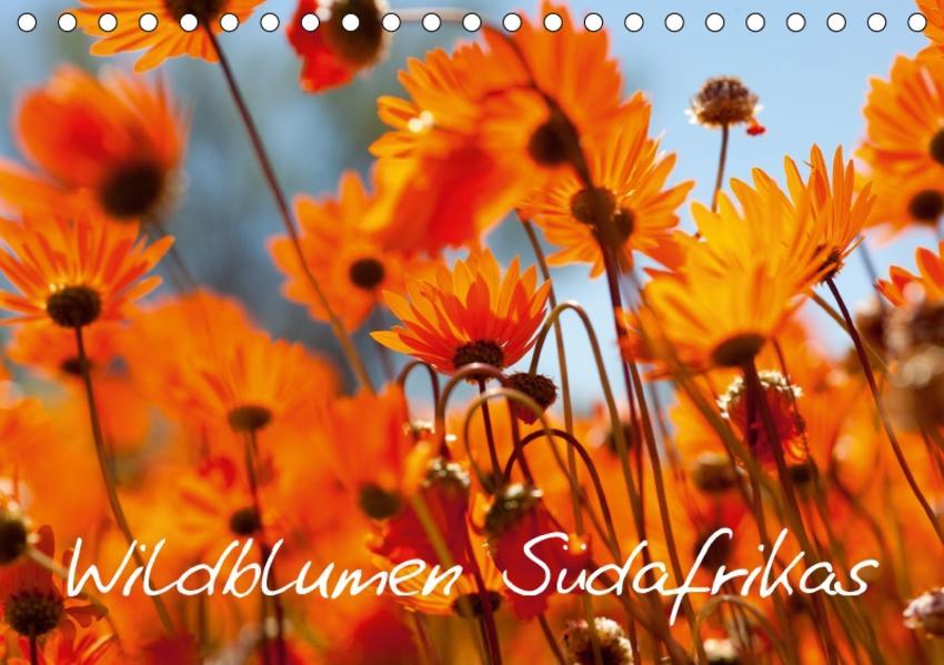 Wildblumen Südafrikas (Tischkalender 2017 DIN A5 quer) - Coverbild