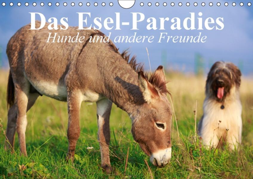 Das Esel-Paradies - Hunde und andere Feunde (Wandkalender 2017 DIN A4 quer) - Coverbild
