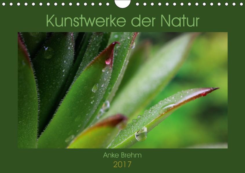 Kunstwerke der Natur (Wandkalender 2017 DIN A4 quer) - Coverbild