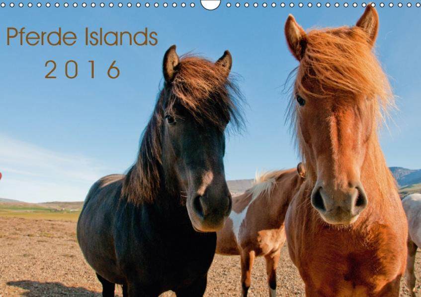 Pferde Islands (Wandkalender 2017 DIN A3 quer) - Coverbild