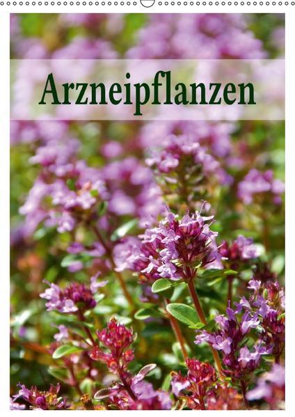 Arzneipflanzen (Wandkalender 2017 DIN A2 hoch) - Coverbild