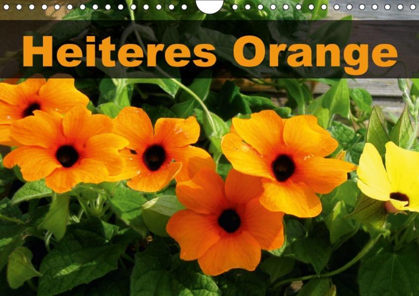 Heiteres Orange (Wandkalender 2017 DIN A4 quer) - Coverbild