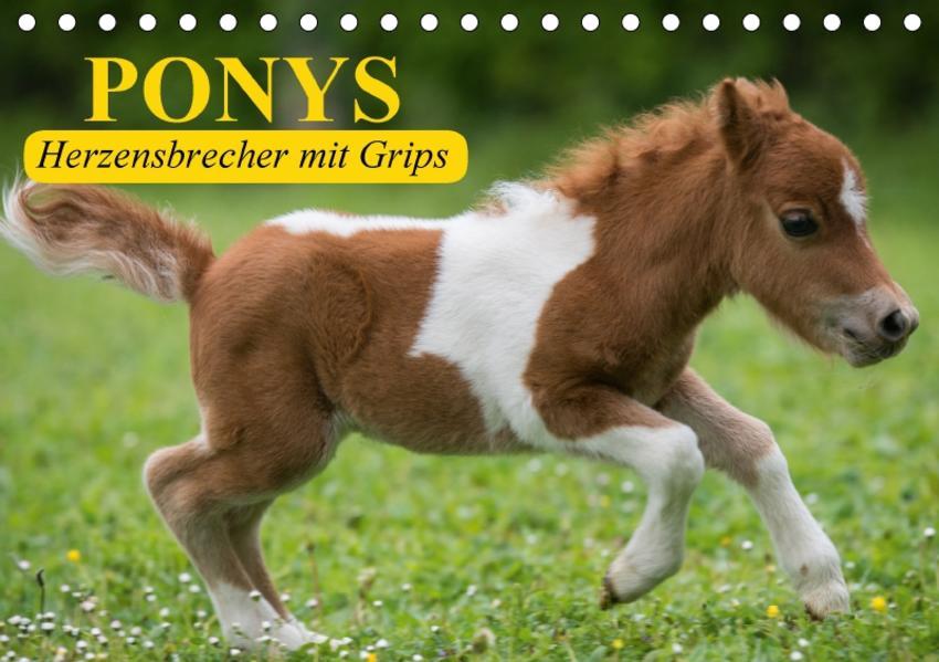 Ponys. Herzensbrecher mit Grips (Tischkalender 2017 DIN A5 quer) - Coverbild
