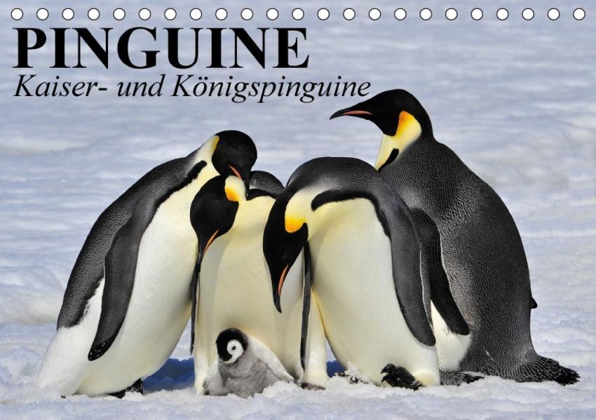 Pinguine - Kaiser- und Königspinguine (Tischkalender 2017 DIN A5 quer) - Coverbild