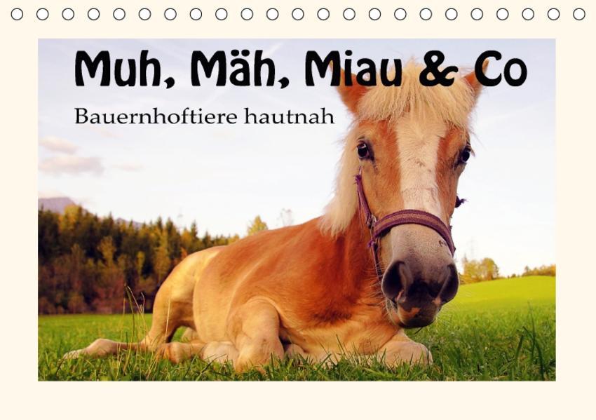 Muh, Mäh, Miau & Co (Tischkalender 2017 DIN A5 quer) - Coverbild