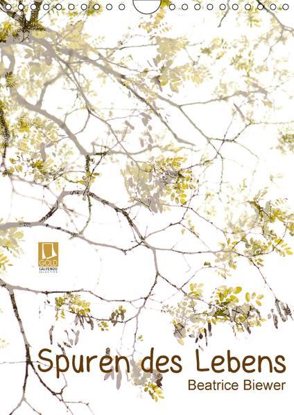 Spuren des Lebens (Wandkalender 2017 DIN A4 hoch) - Coverbild