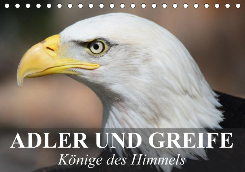 Adler und Greife - Könige des Himmels (Tischkalender 2017 DIN A5 quer) - Coverbild