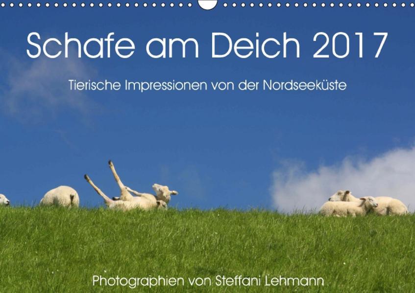Schafe am Deich 2017. Tierische Impressionen von der Nordseeküste (Wandkalender 2017 DIN A3 quer) - Coverbild