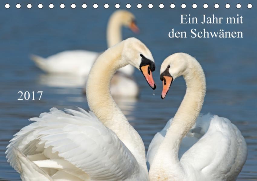 Ein Jahr mit den SchwänenCH-Version  (Tischkalender 2017 DIN A5 quer) - Coverbild