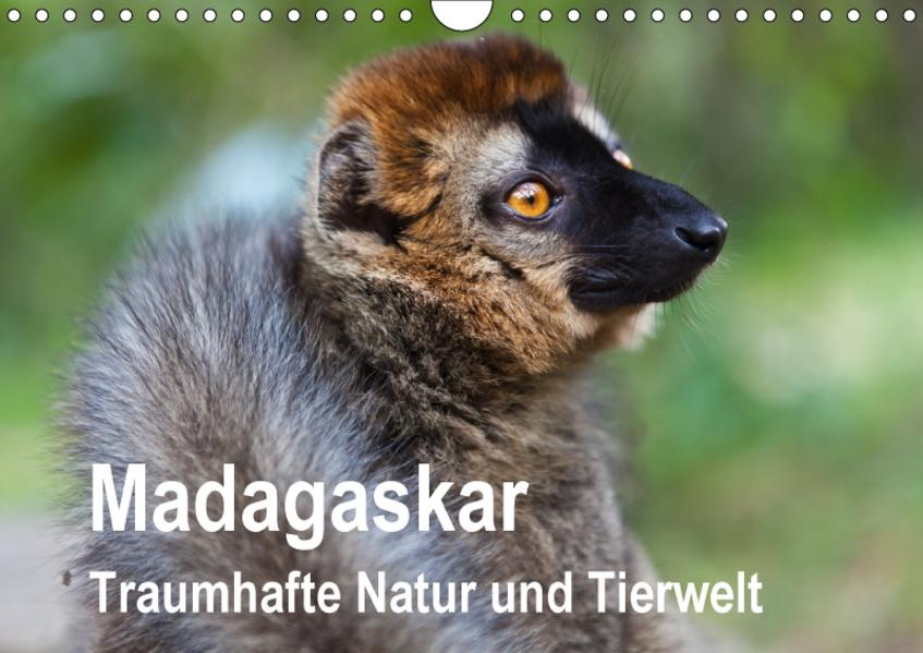Madagaskar Traumhafte Natur und Tierwelt (Wandkalender 2017 DIN A4 quer) - Coverbild