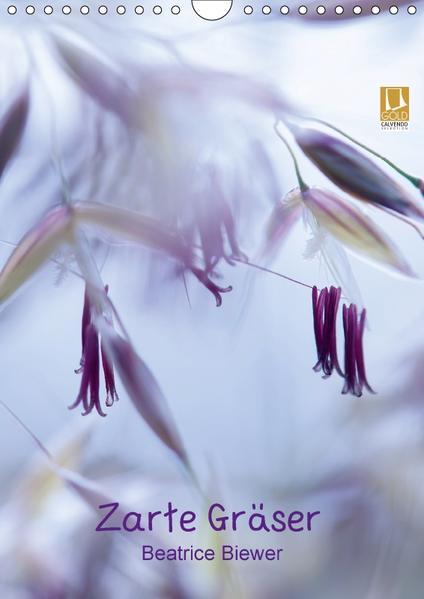 Zarte Gräser (Wandkalender 2017 DIN A4 hoch) - Coverbild