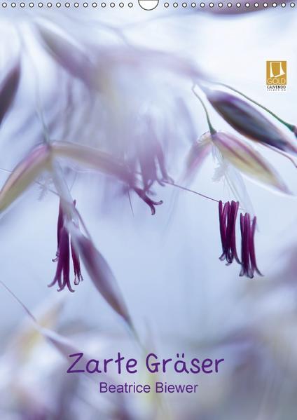 Zarte Gräser (Wandkalender 2017 DIN A3 hoch) - Coverbild