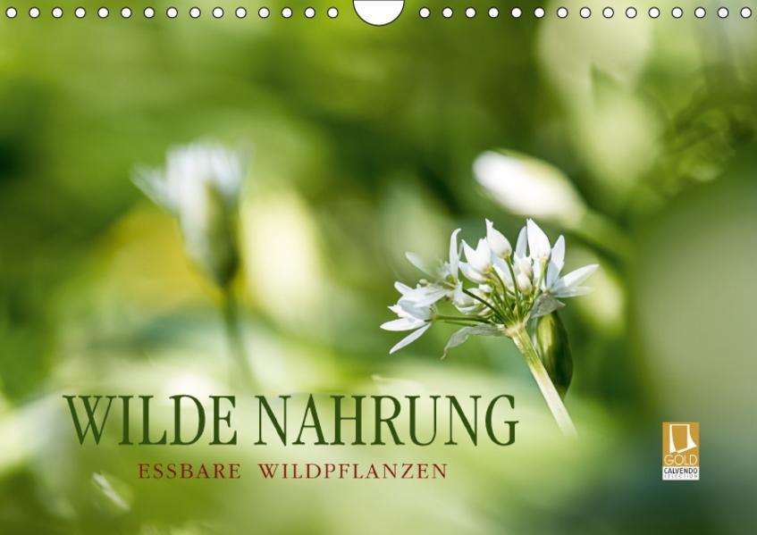 WILDE NAHRUNGAT-Version  (Wandkalender 2017 DIN A4 quer) - Coverbild
