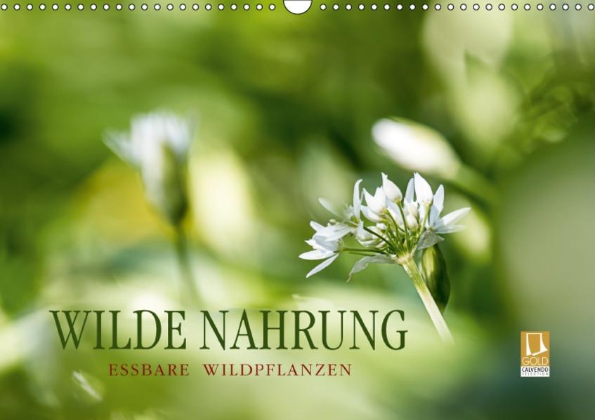 WILDE NAHRUNGAT-Version  (Wandkalender 2017 DIN A3 quer) - Coverbild