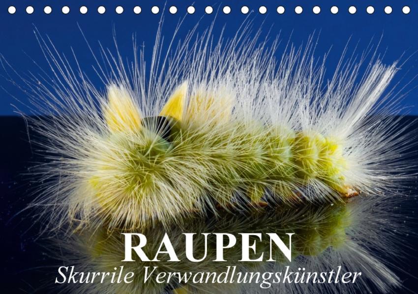 Raupen - Skurrile Verwandlungskünstler (Tischkalender 2017 DIN A5 quer) - Coverbild