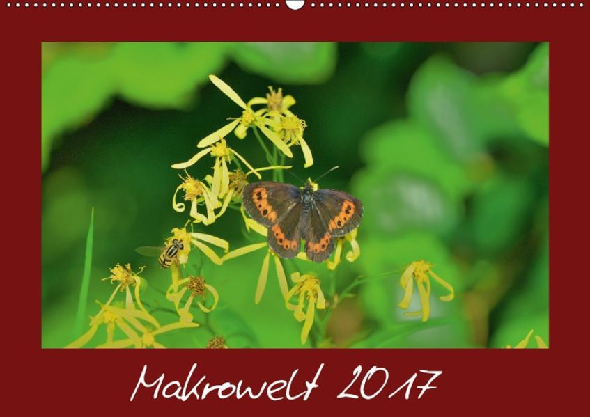 Makrowelt 2017 (Wandkalender 2017 DIN A2 quer) - Coverbild