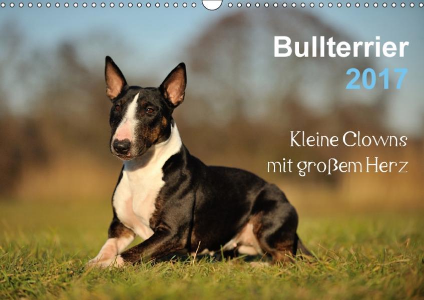 Bullterrier 2017 - Kleine Clowns mit großem Herz (Wandkalender 2017 DIN A3 quer) - Coverbild