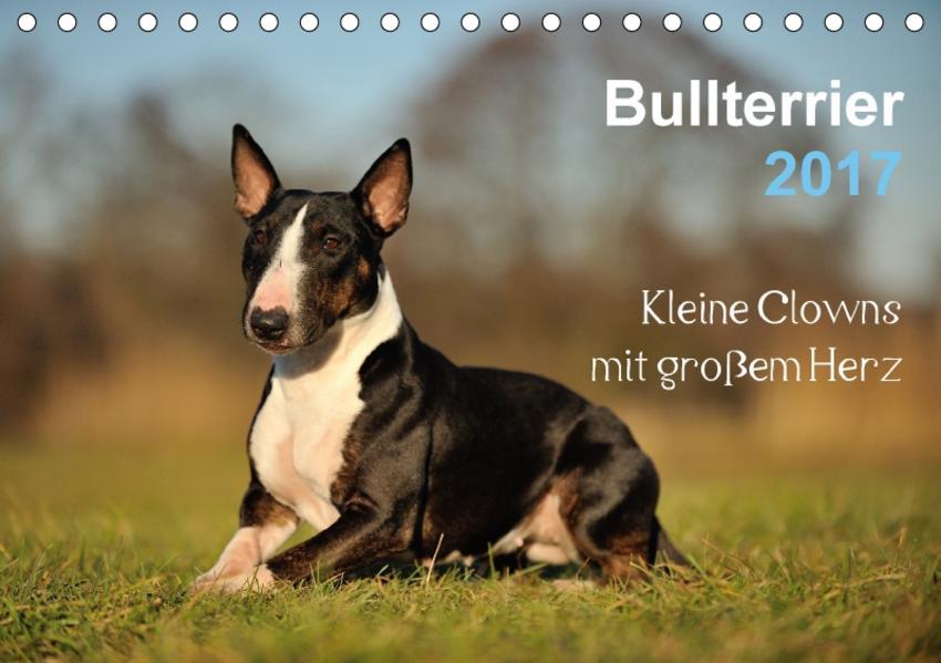 Bullterrier 2017 - Kleine Clowns mit großem Herz (Tischkalender 2017 DIN A5 quer) - Coverbild