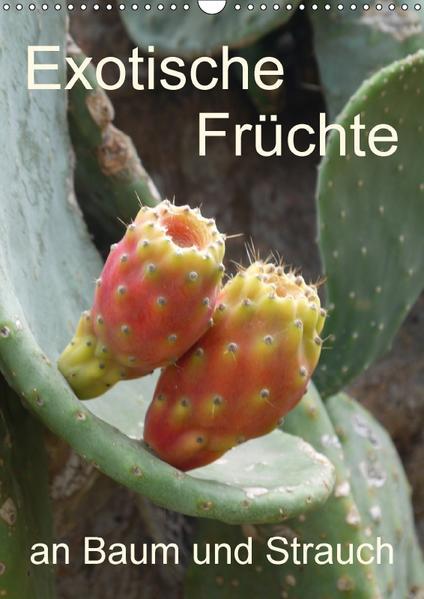 Exotische Früchte an Baum und Strauch (Wandkalender 2017 DIN A3 hoch) - Coverbild