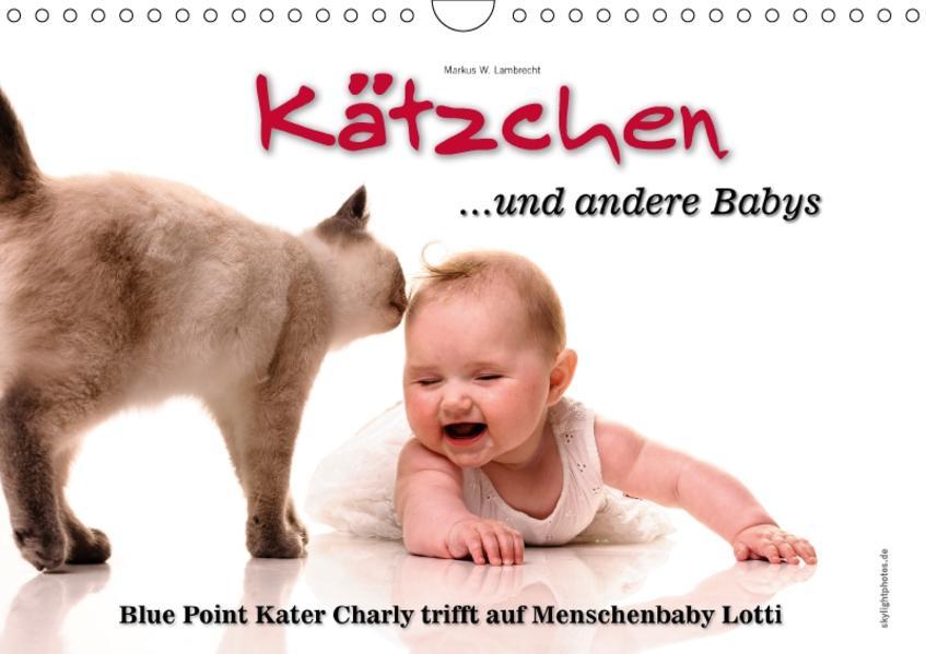 Kätzchen und andere Babys (Wandkalender 2017 DIN A4 quer) - Coverbild