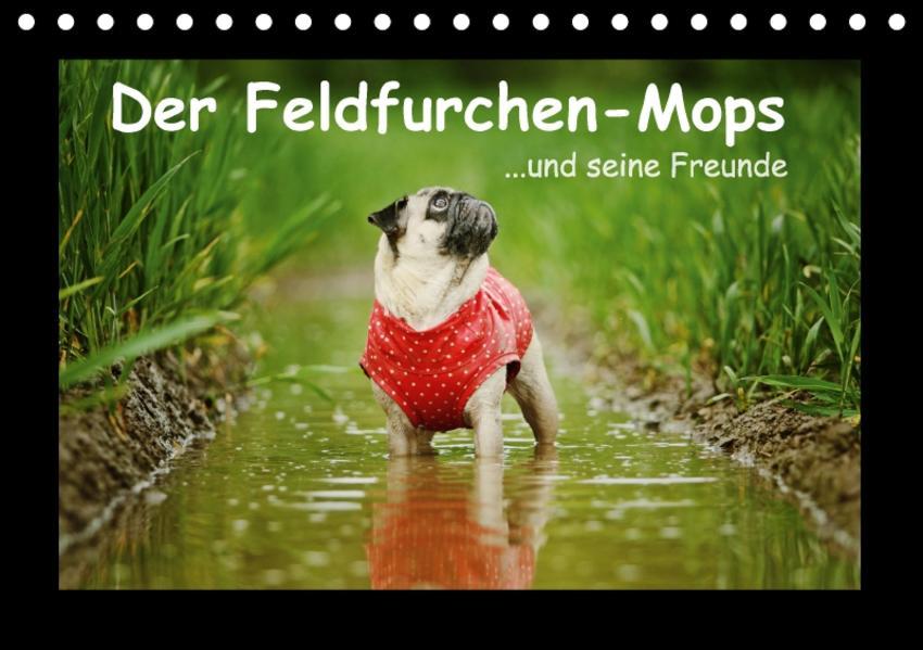 Der Feldfurchen-Mops (Tischkalender 2017 DIN A5 quer) - Coverbild