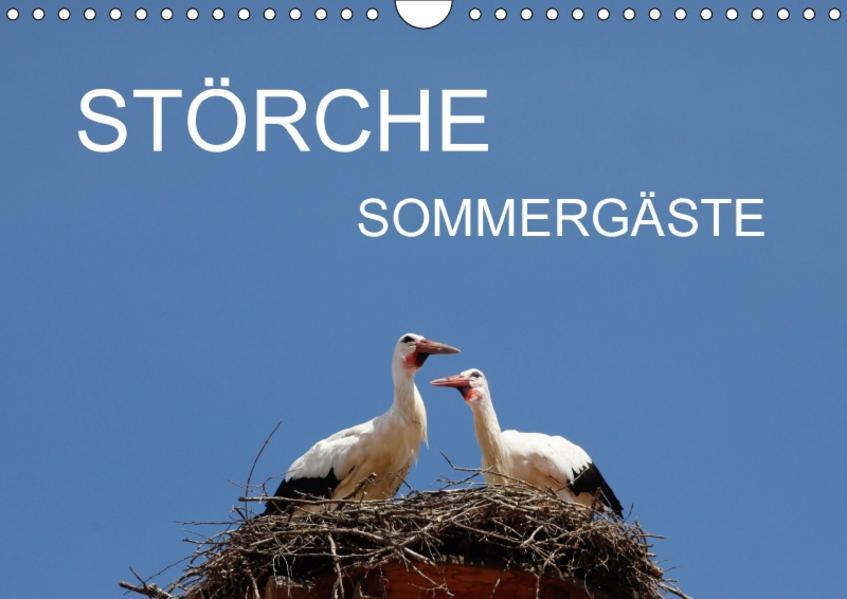 Störche - SommergästeAT-Version  (Wandkalender 2017 DIN A4 quer) - Coverbild