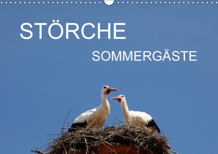Störche - SommergästeAT-Version  (Wandkalender 2017 DIN A3 quer) - Coverbild