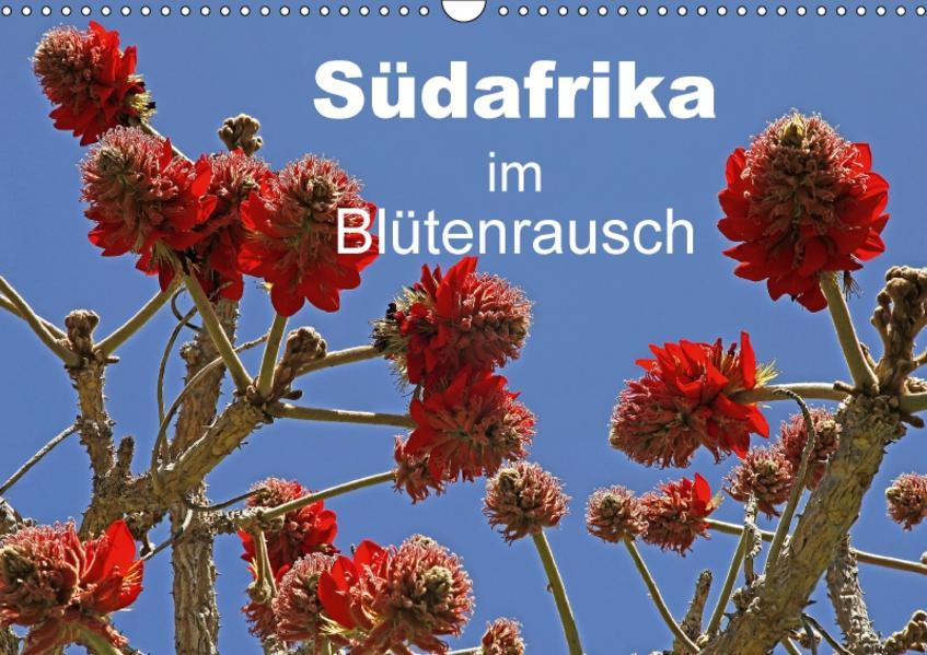 Südafrika im Blütenrausch (Wandkalender 2017 DIN A3 quer) - Coverbild