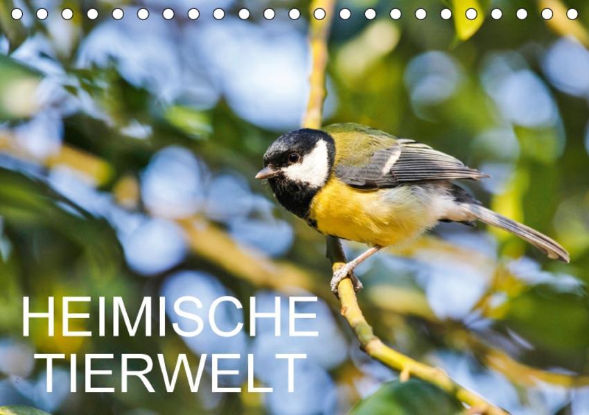 Heimische TierweltCH-Version  (Tischkalender 2017 DIN A5 quer) - Coverbild