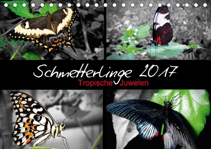 Schmetterlinge 2017 - Tropische Juwelen (Tischkalender 2017 DIN A5 quer) - Coverbild
