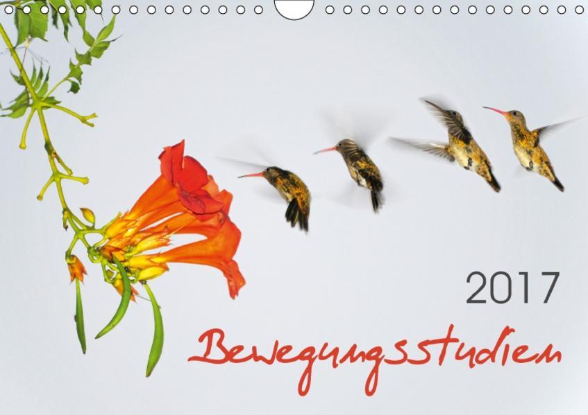 Bewegungsstudien (Wandkalender 2017 DIN A4 quer) - Coverbild