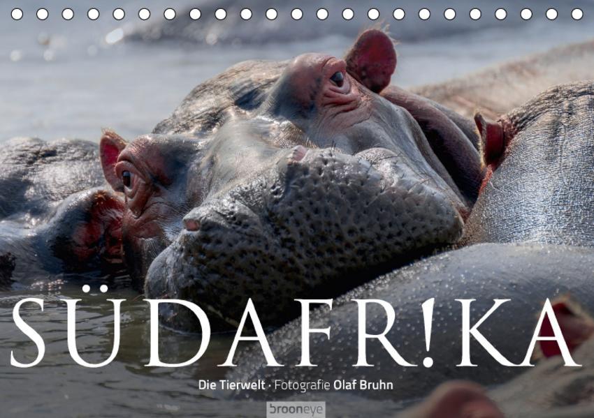 Südafrika - Die Tierwelt (Tischkalender 2017 DIN A5 quer) - Coverbild