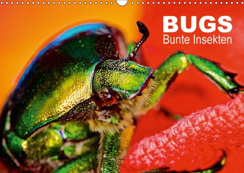 BUGS, Bunte Insekten (Wandkalender 2017 DIN A3 quer) - Coverbild