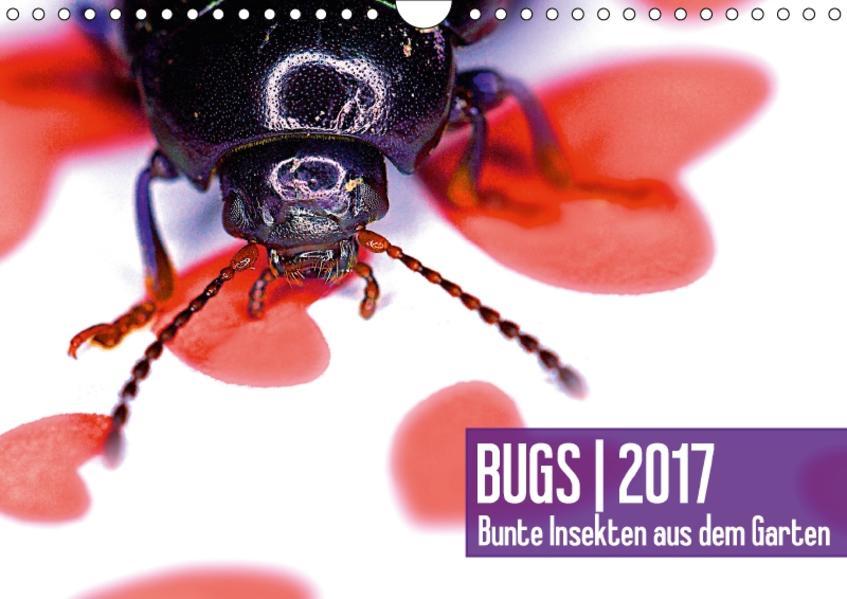 BUGS  2017, Bunte Insekten aus dem GartenAT-Version  (Wandkalender 2017 DIN A4 quer) - Coverbild