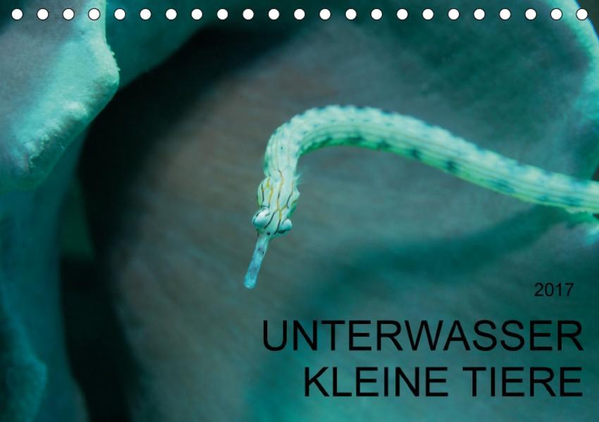 UNTERWASSER KLEINE TIERE (Tischkalender 2017 DIN A5 quer) - Coverbild