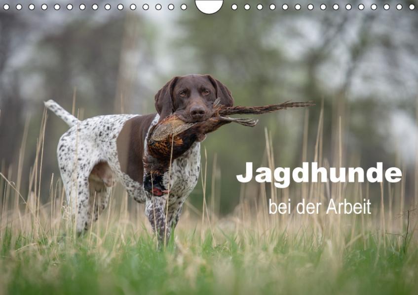 Jagdhunde bei der Arbeit (Wandkalender 2017 DIN A4 quer) - Coverbild