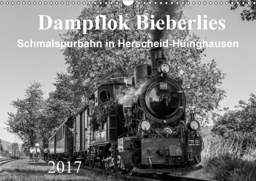 Dampflok Bieberlies in Herscheid-Hüinghausen (Wandkalender 2017 DIN A3 quer) - Coverbild