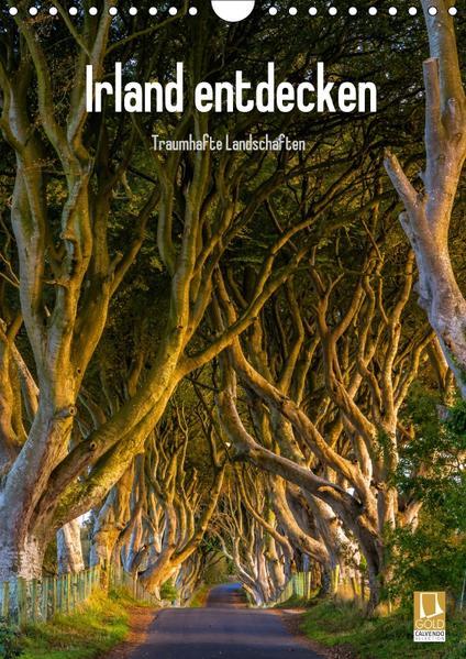 Irland entdecken (Wandkalender 2017 DIN A4 hoch) - Coverbild