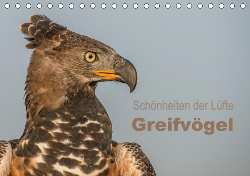 Schönheiten der Lüfte - Greifvögel (Tischkalender 2017 DIN A5 quer) - Coverbild