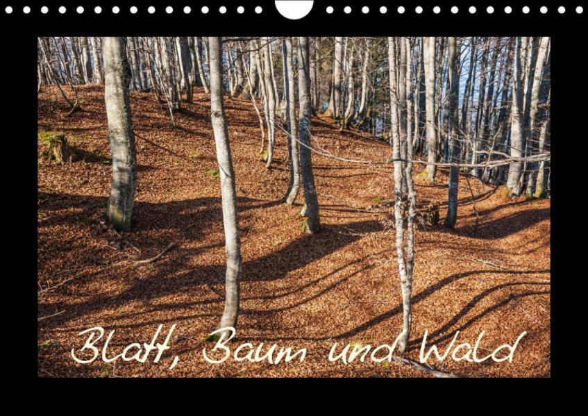 Blatt, Baum und Wald (Wandkalender 2017 DIN A4 quer) - Coverbild