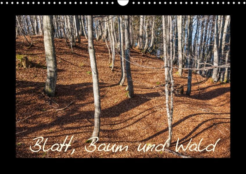 Blatt, Baum und Wald (Wandkalender 2017 DIN A3 quer) - Coverbild