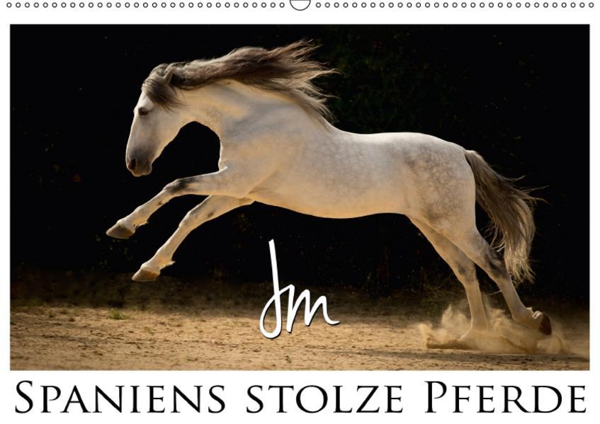 Spaniens stolze PferdeAT-Version  (Wandkalender 2017 DIN A2 quer) - Coverbild